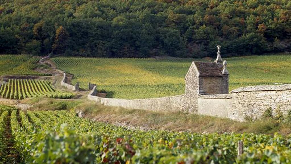 bourgogne-gevrey-chambertin-lemaire-hebdo-vin-chine