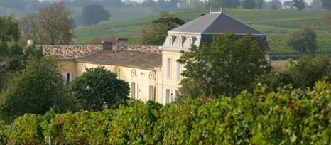 richelieu-vignes-chateau-lemaire-hebdo-vin-chine