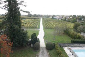 Bonnange-vignes-Lemaire-hebdo-vin-chine