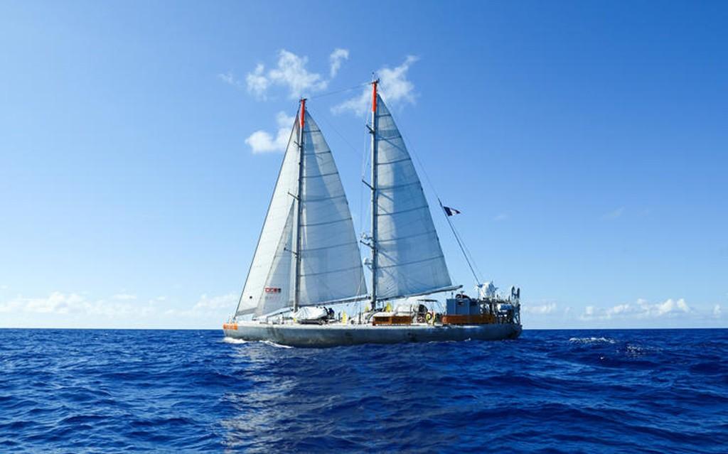 Tara-bateau-chine-lemaire-hebdo-vin