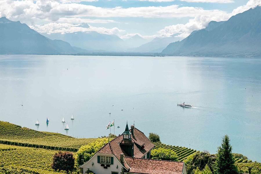 concours-mondial-Bruxelles-suisse-2019-lemaire-hebdo-vin-chine