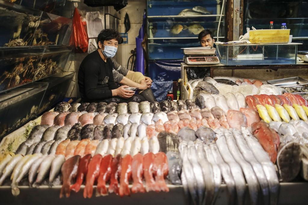 marche-pekin-Xinfadi-poissons-lemaire-hebdo-vin-chine