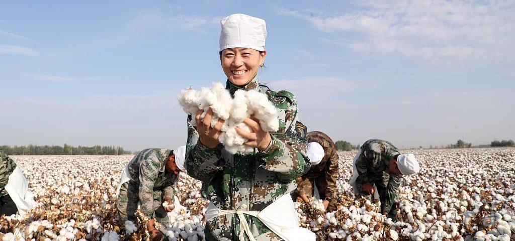 coton-recolte-xinjiang-lemaire-hebdo-vin-chine