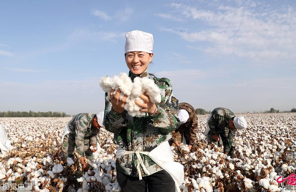 coton-recolte-xinjiang-lemaire-hebdo-vin-chine